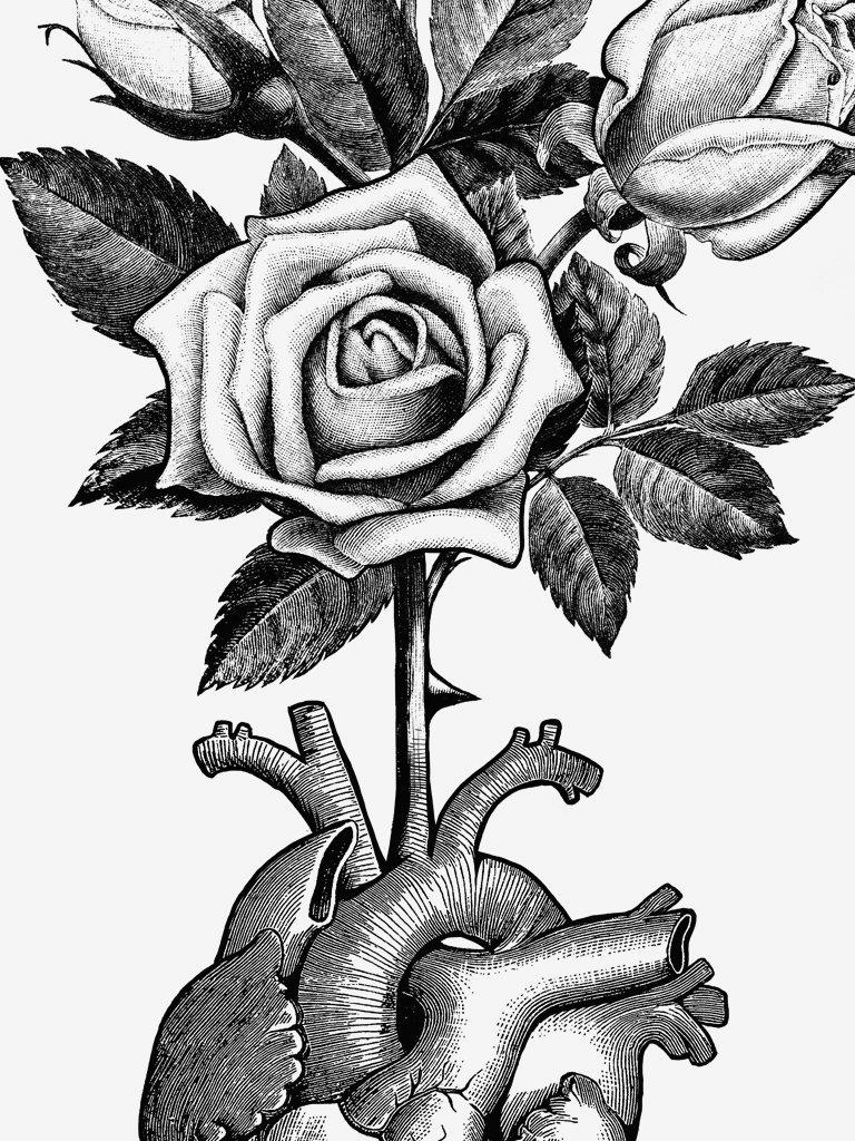 768x1024 Heart Bloom Divine Savages
