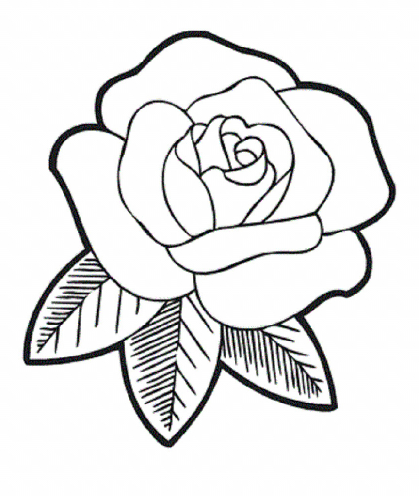 864x1024 Rose Flower Drawings For Kids Blooming Rose Coloring Page For Kids