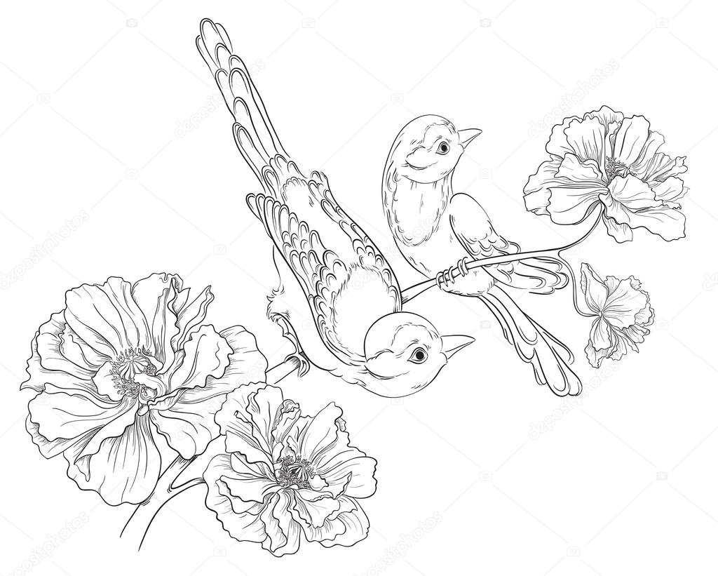 1024x821 Two Birds Sitting On Blooming Roses. Flower Background. Vector
