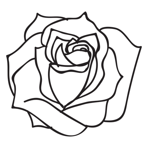 512x512 Blooming Rose Stroke Icon Flower