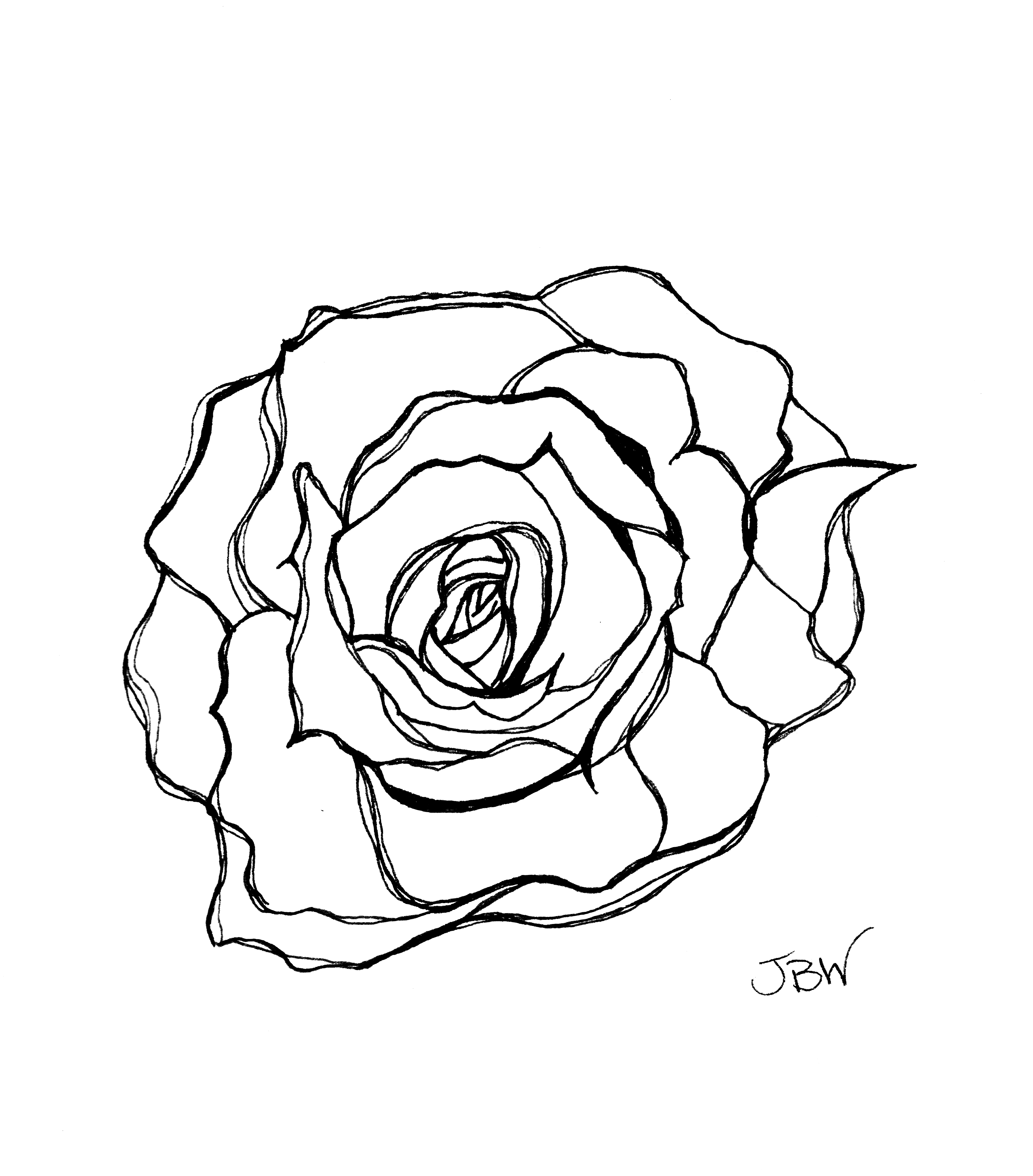 3522x4008 Modern Rose Pen And Ink
