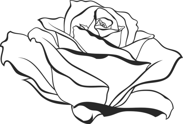 600x409 Side View Of Blooming Rose Rubber Stamp Flower Amp Leaf Stamps