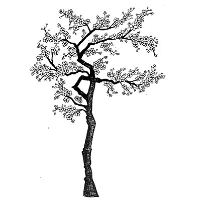 400x400 Cherry Blossom Tree Lavinia Stamps Ltd
