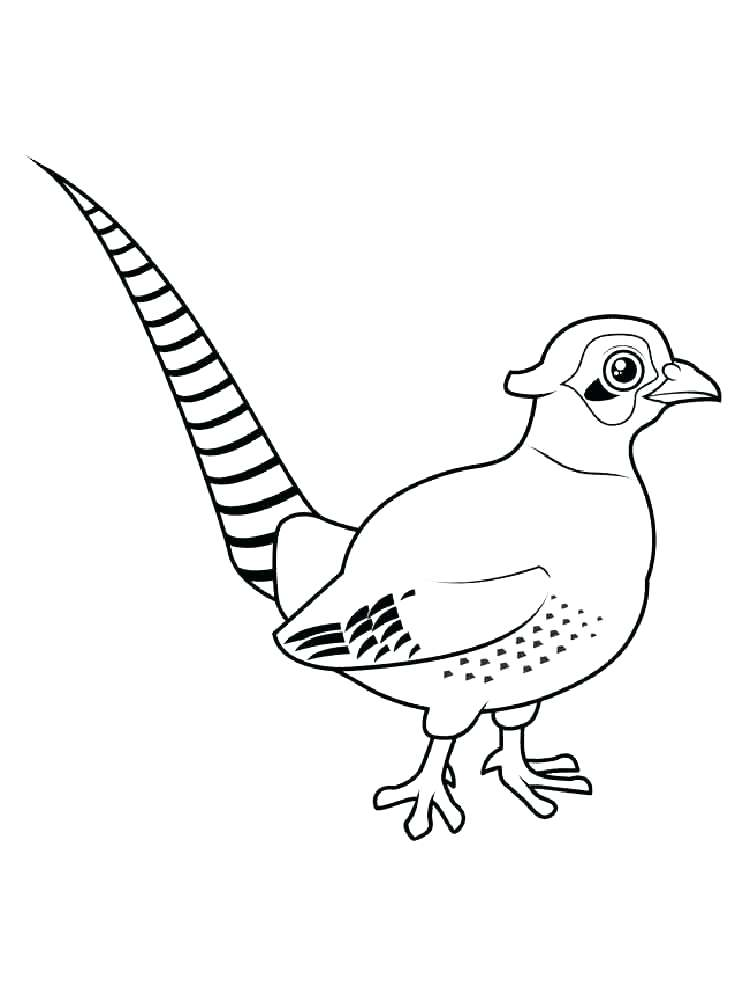 750x1000 Blue Bird Coloring Page Bluebird Coloring Pages Eastern Bluebird