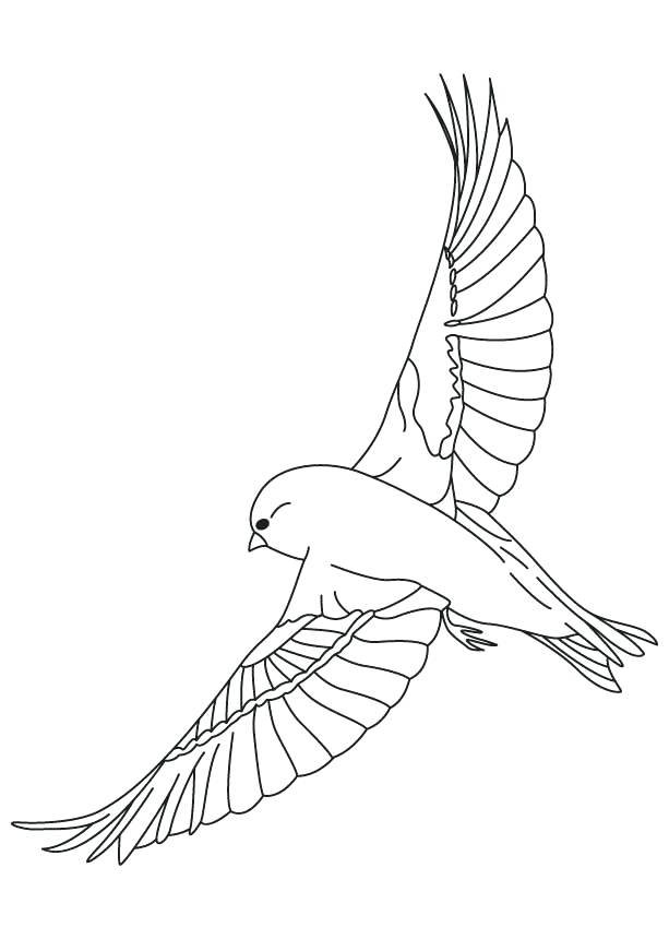 613x860 Blue Bird Coloring Page Brexitbook.club