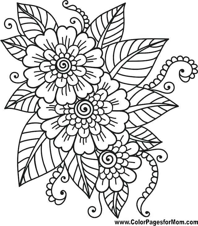 640x732 Flower Pattern Coloring Pages Packed With Bluebonnet Coloring Page