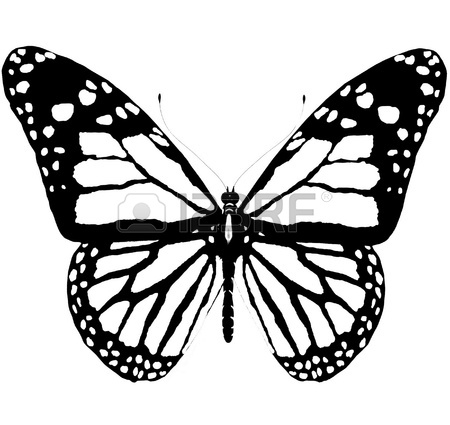 450x425 Isolated Butterfly Of Blue Color On A White Background Stock Photo