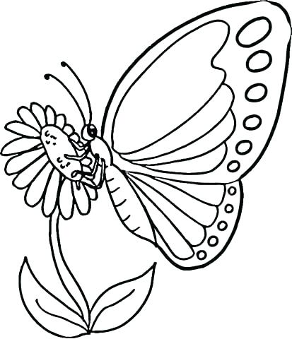 413x480 Coloring Page Blue Morpho Butterfly Coloring Pages Collection