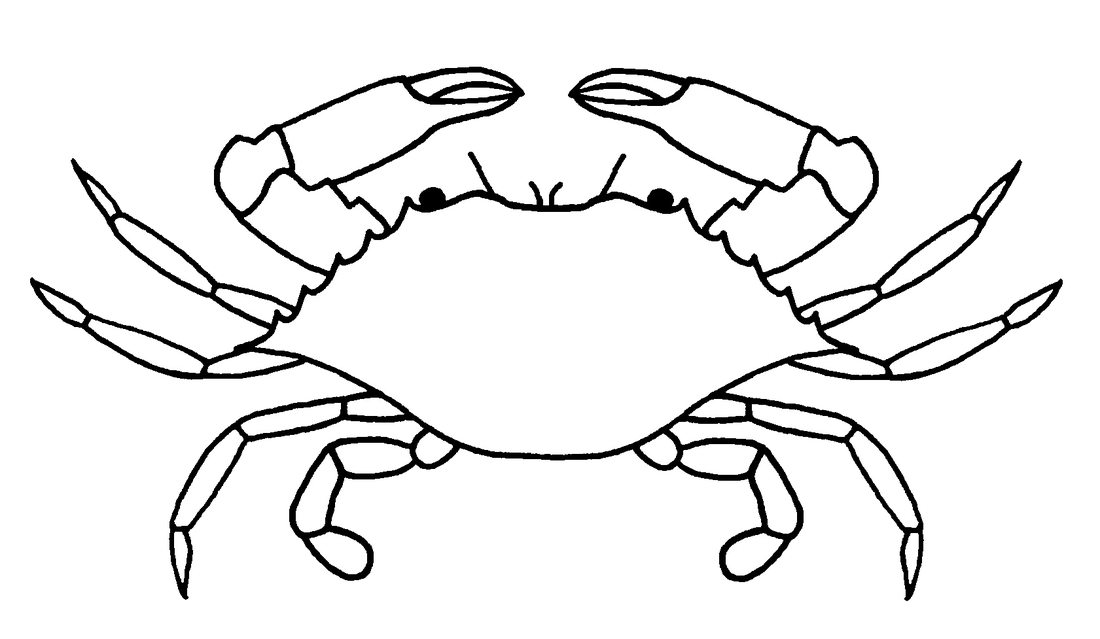 It's just a picture of Sizzling Blue Crab Drawing