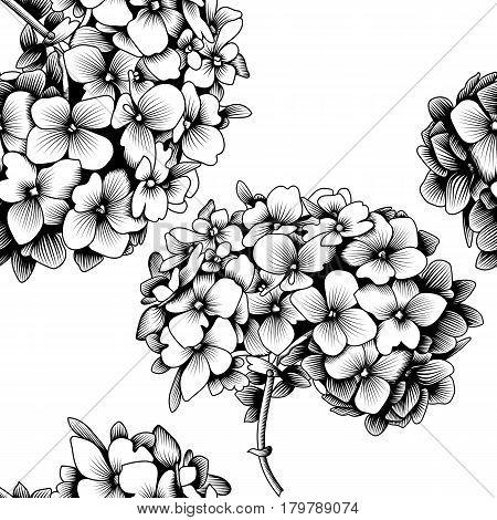 450x470 Seamless Pattern Hydrangea Flower Vector Amp Photo Bigstock