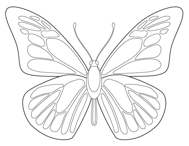 650x502 Free Butterfly Printable Butterfly Drawing, Butterfly