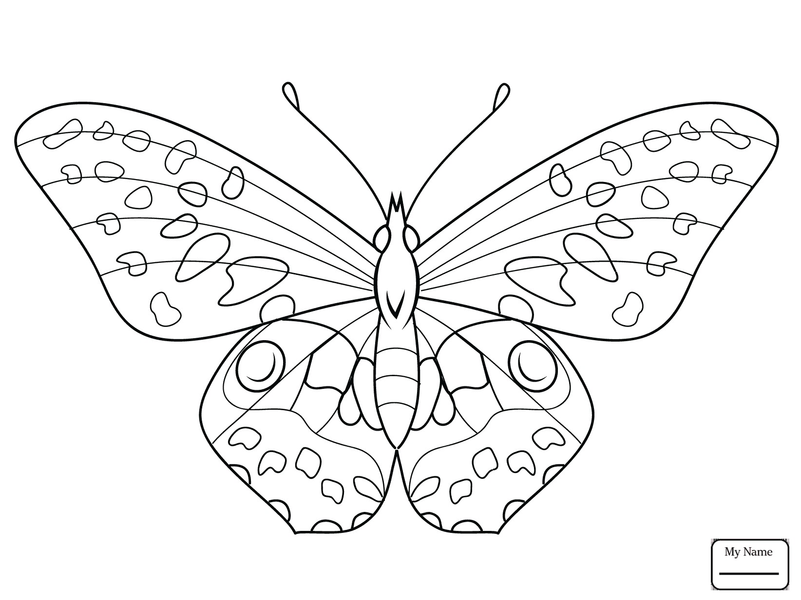 1644x1233 Morpho Butterfly Coloring Pages Copy Butterfly Flies A Flower