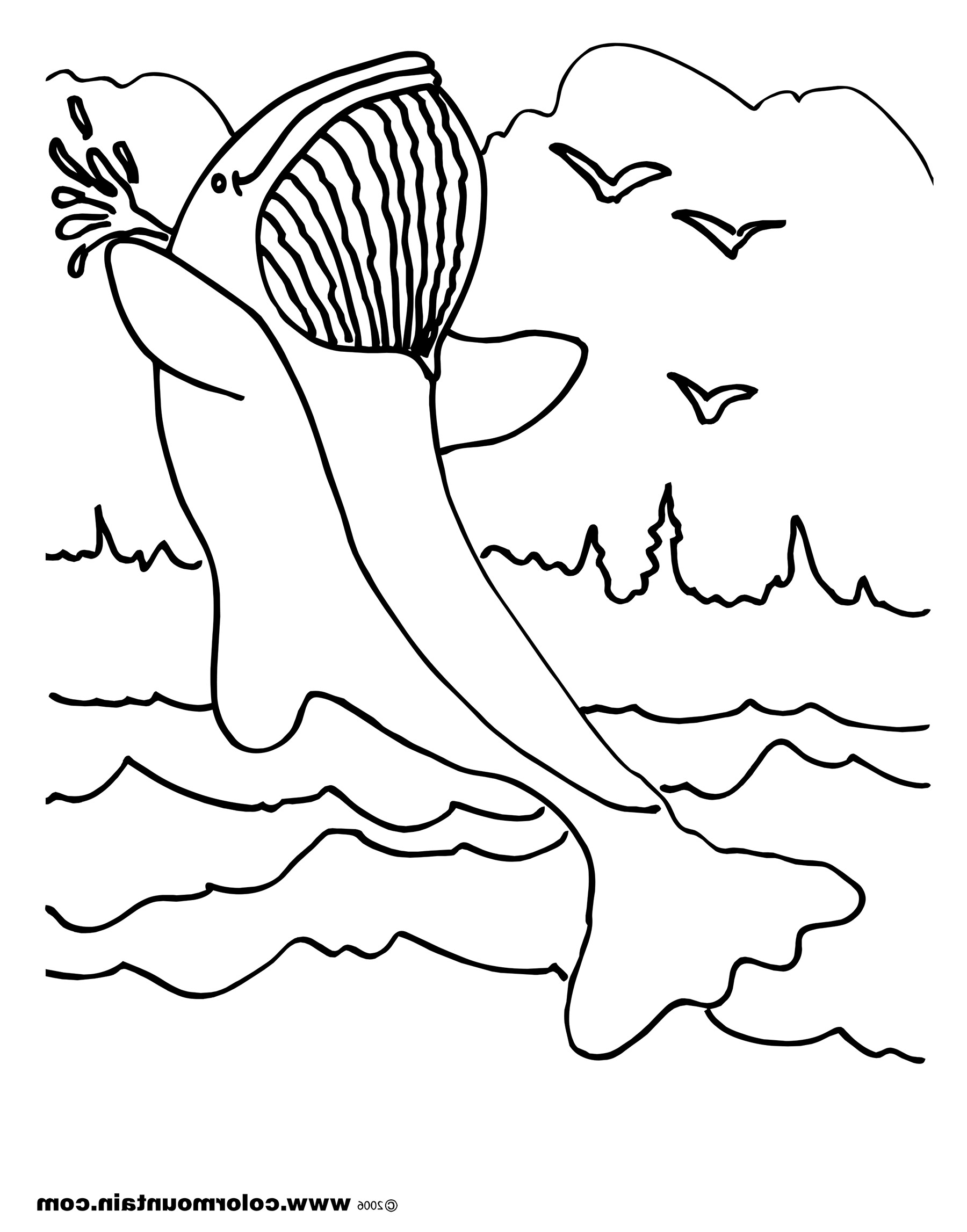 Blue Whale Line Drawing at GetDrawings.com | Free for personal use ...