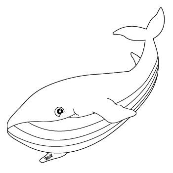 350x350 Buy Whale Organic Baby Amp Kids Clothing I Endanzoo