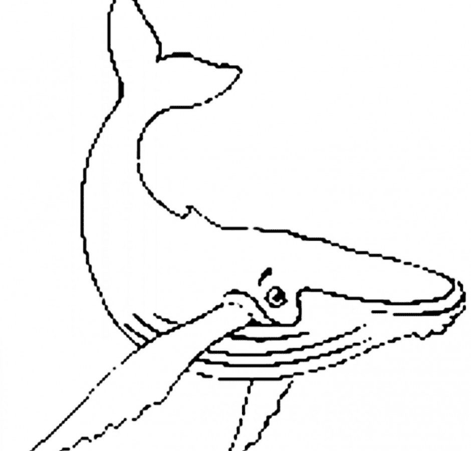 Blue Whales Drawing at GetDrawings.com | Free for personal use Blue ...