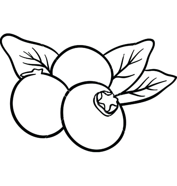 600x632 Blueberry Coloring Page Click To See Printable Version
