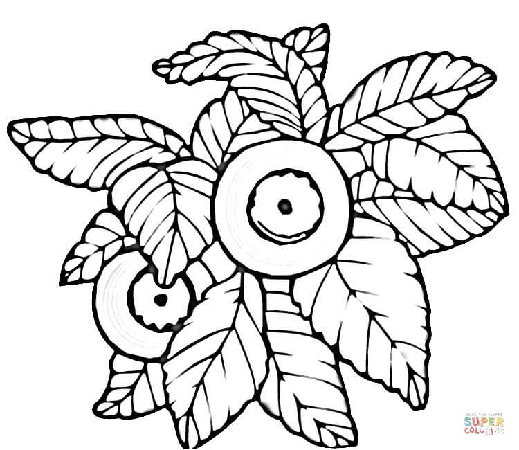 750x650 Blueberry Coloring Pages Free Coloring Pages