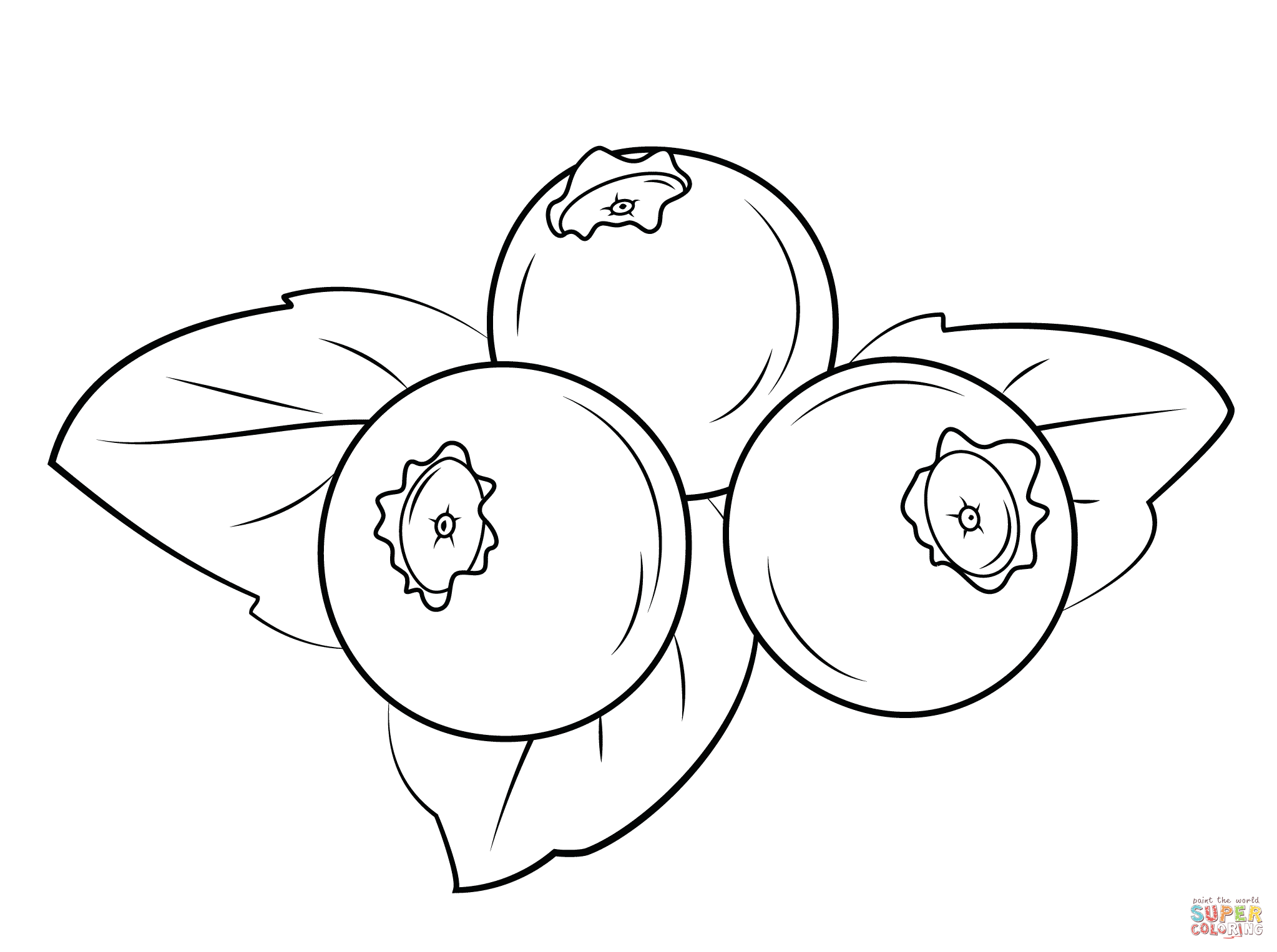 Blueberry drawing at free for personal for Blueberry coloring page