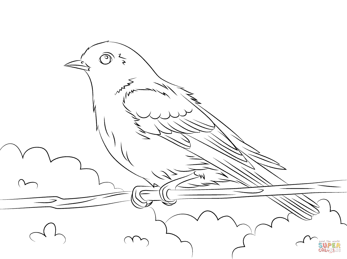 1200x895 Eastern Bluebird Coloring Page Eastern Bluebird Coloring Sheet