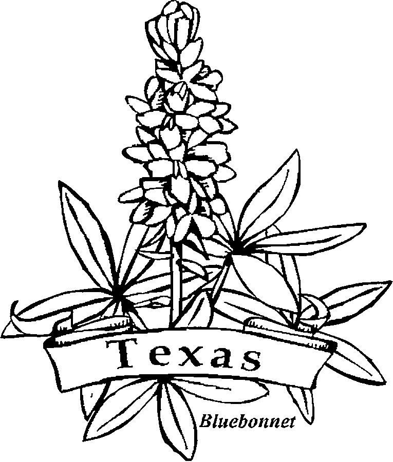 Contemporáneo Colorear Texas Bluebonnet Cresta - Dibujos Para ...