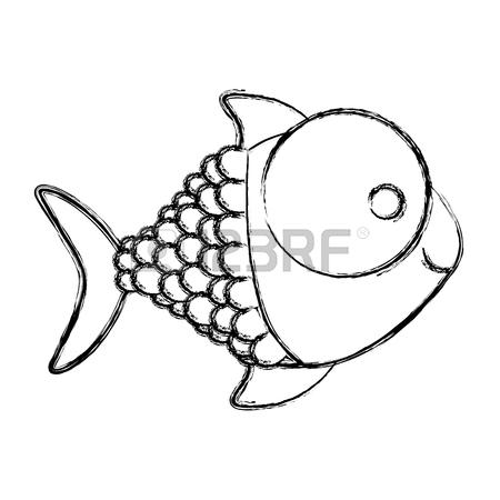 Bluefin Tuna Drawing