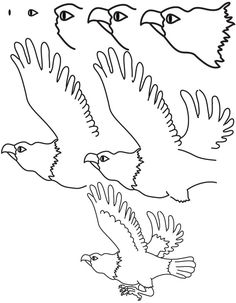 236x303 Step By Step Drawing Animals How To Draw A Vulture With Simple