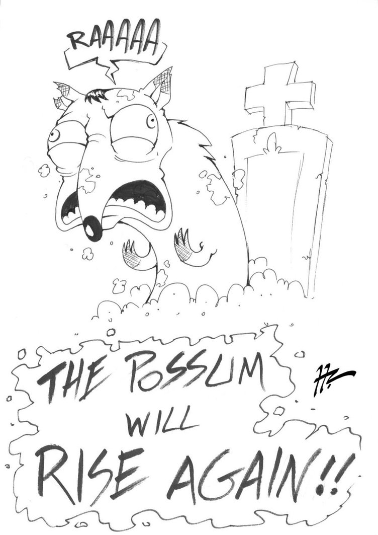 752x1063 Sketch Rising Possum By Blunt Katana