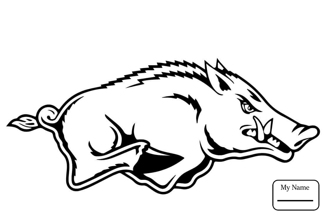 1110x734 Angry Wild Boar Mammals Coloring Pages