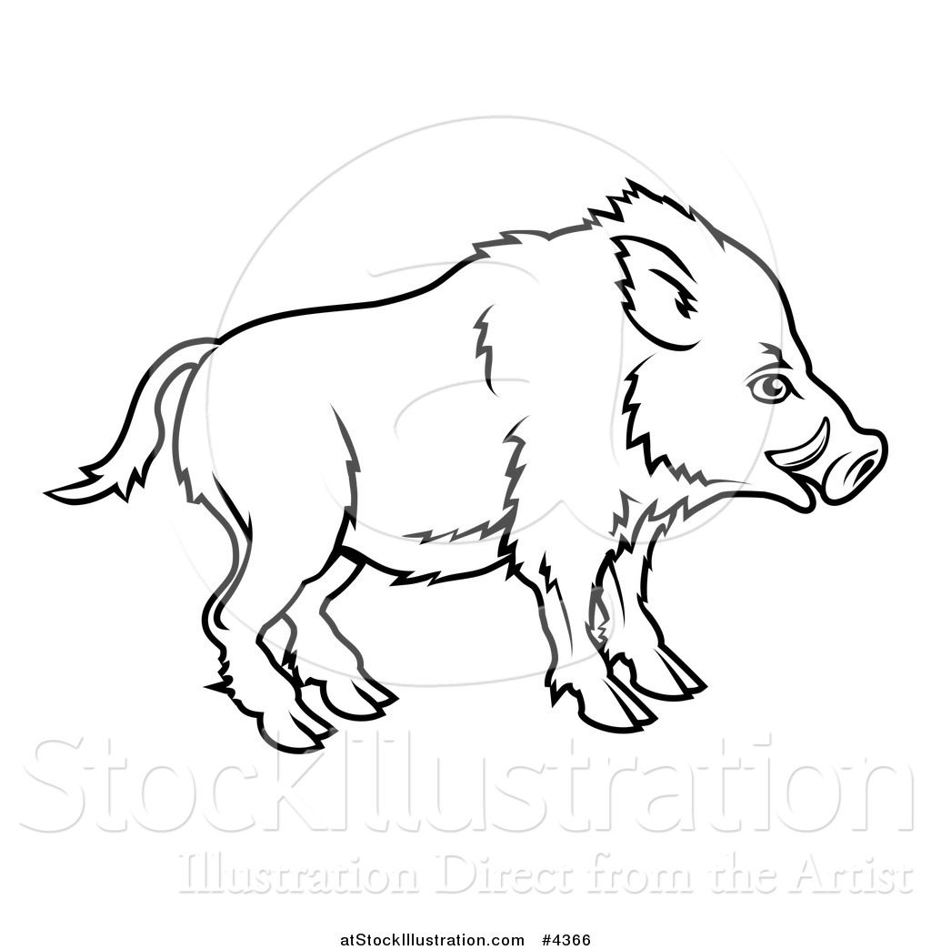 1024x1044 Vector Illustration Of An Outlined Chinese Zodiac Boar In Profile