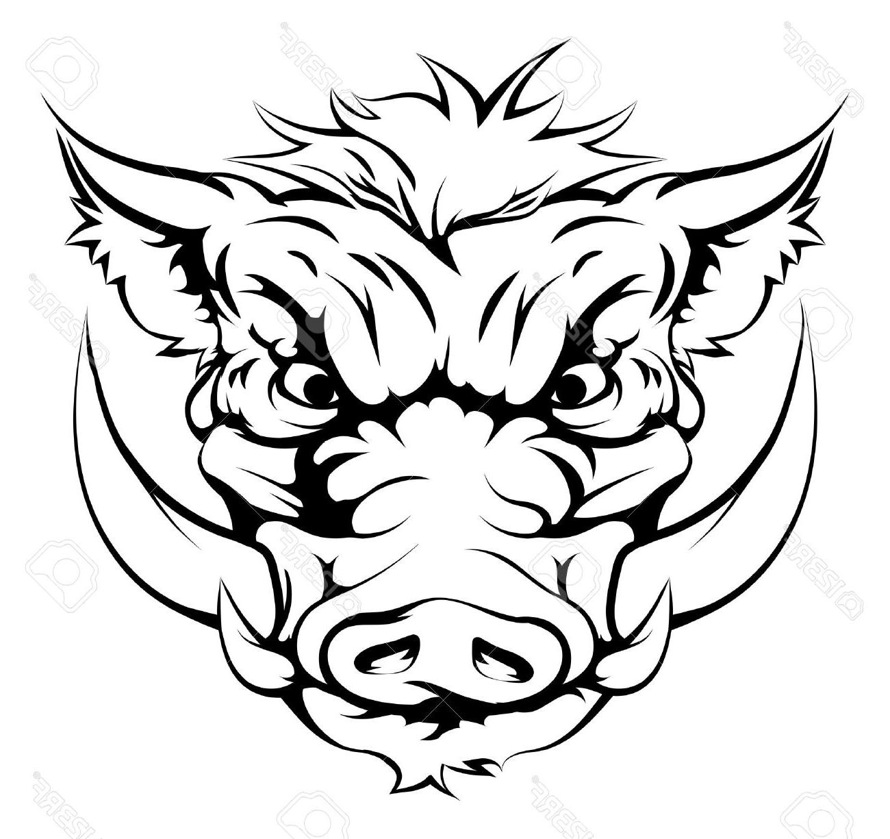 1300x1225 Best Free Drawing Of Boar Animal Character Or Sports Mascot