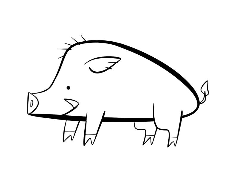 792x612 Boar