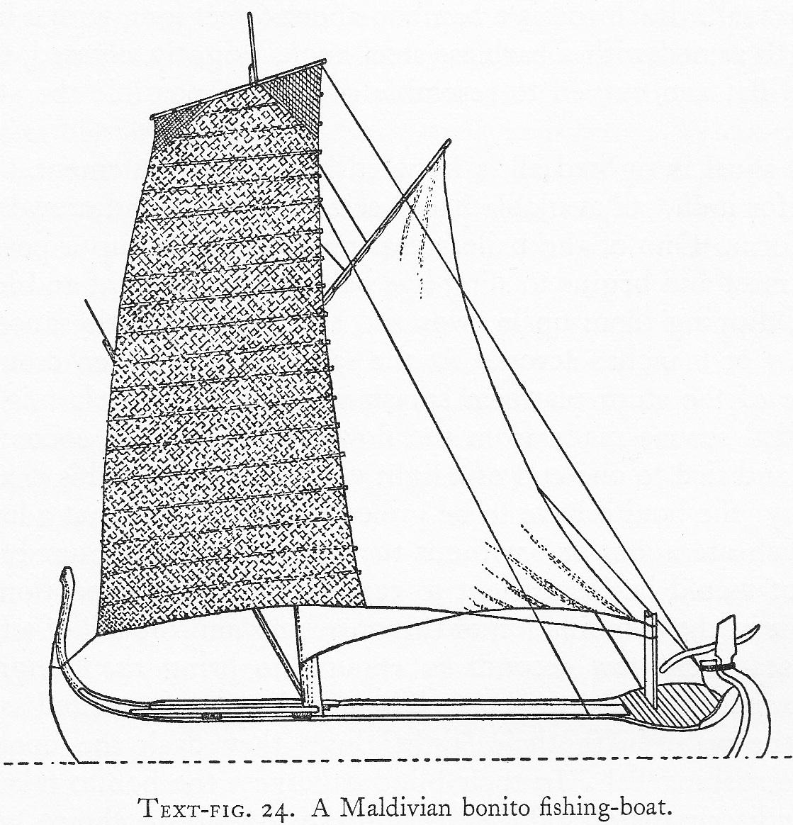 1119x1164 Indigenous Boats Bonito Fishing Boats In Maldives