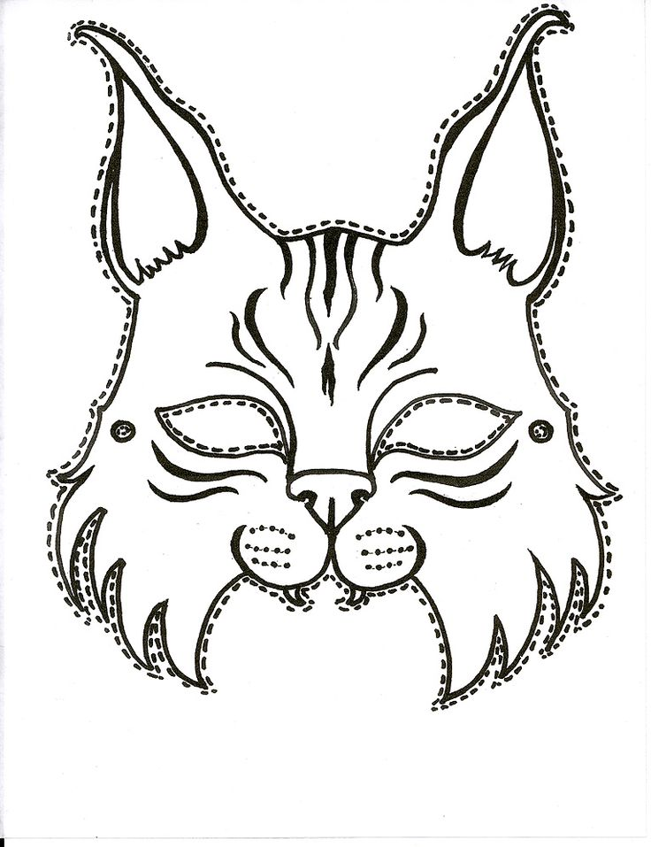 Bobcat Face Drawing