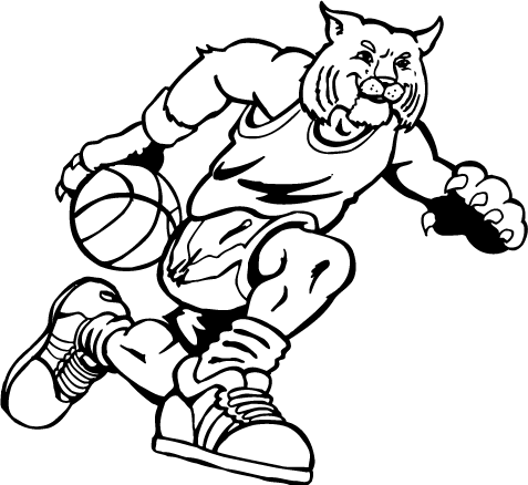 Bobcats Drawing