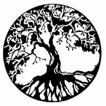 342x342 Weddings Bodhi Tree Bistro