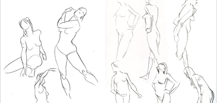 756x359 Drawing The Human Body A Primer Craftsy