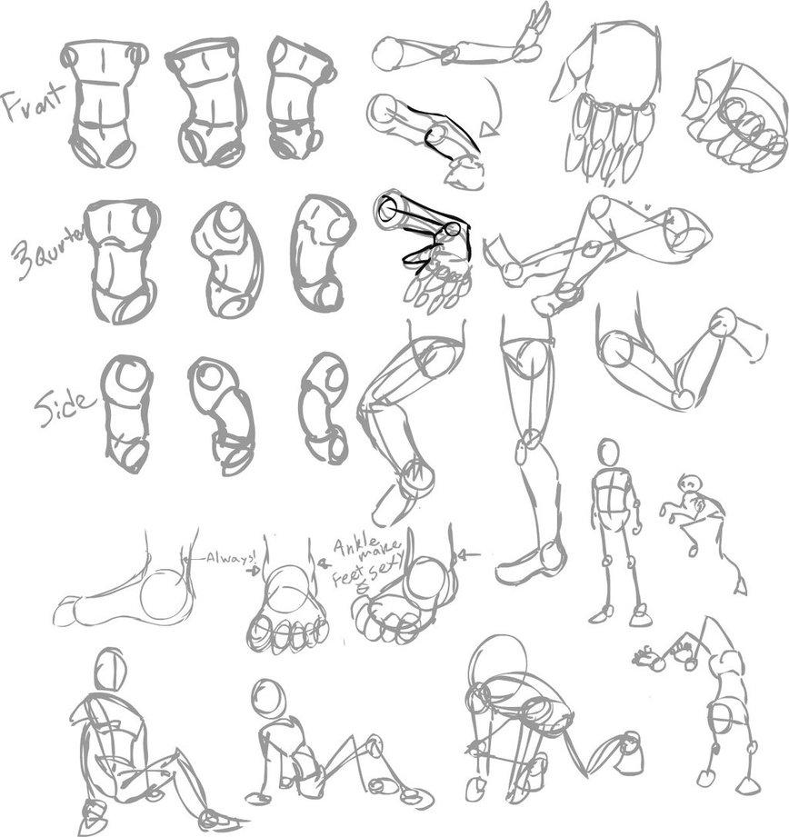 868x921 Body Sketch Set Up By Alkseeyakc