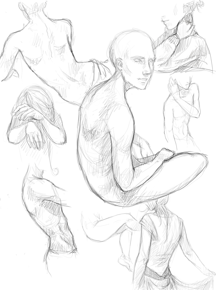 717x960 Anatomyody Sketches By Tickclick