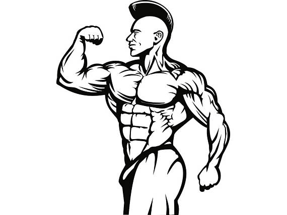 570x428 Bodybuilder 5 Bodybuilding Dumbbell Logo Back Pose
