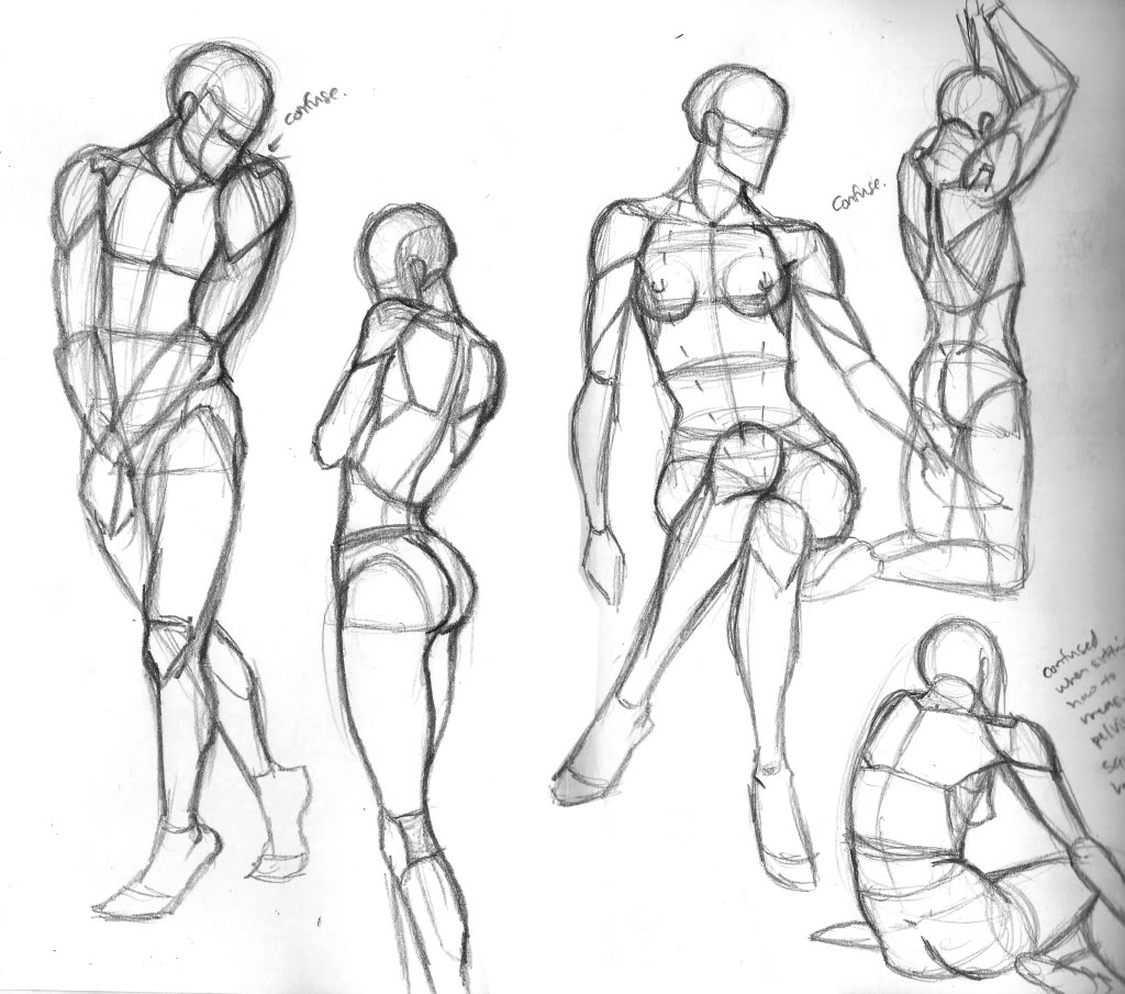 1024x905 Drawing The Human Form Elora's Sketchcan Analytical Figure Drawing