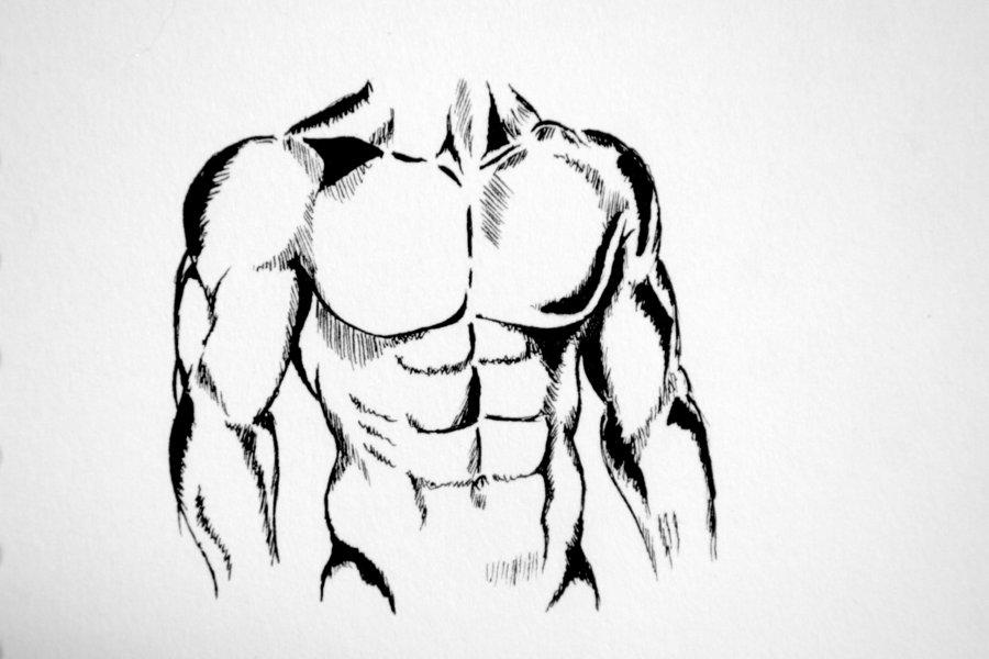 900x600 Body Sketch By Sinvanity