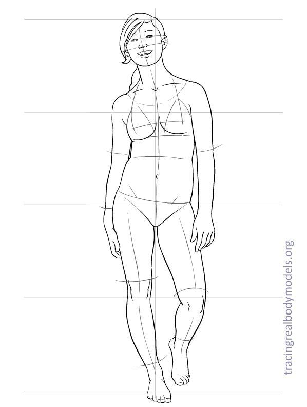Body Model Drawing At Getdrawings Com Free For Personal Use Body