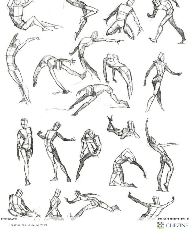 736x892 Drawing Body Parts Alexis Alberini