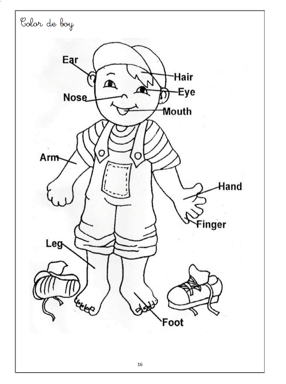 958x1285 Parts Of The Body Drawing Parts Of The Body Coloring Pages