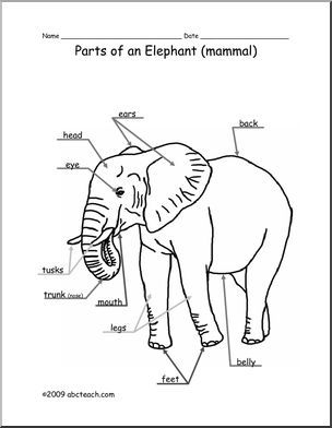 body parts drawing at getdrawings free for personal use body Eye Anatomy Diagram Label 304x392 animal diagram elephant labeled and unlabeled abcteach
