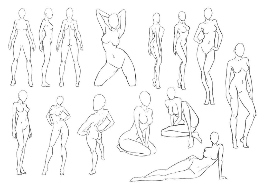 Gymnastics female anatomy poses