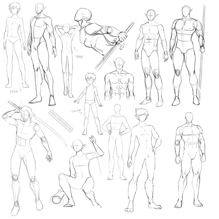 Body References For Drawing At Getdrawings Free Download