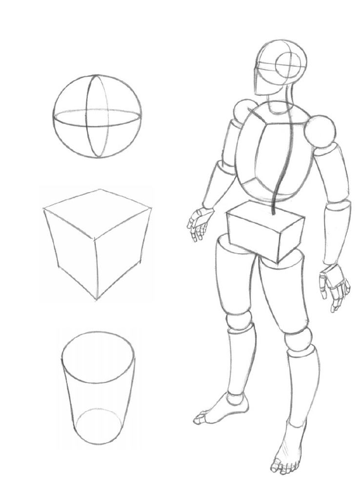 This is an image of Massif Figure Drawing Basics