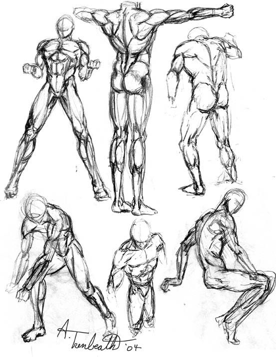 553x715 Gallery Human Figure Sketches,