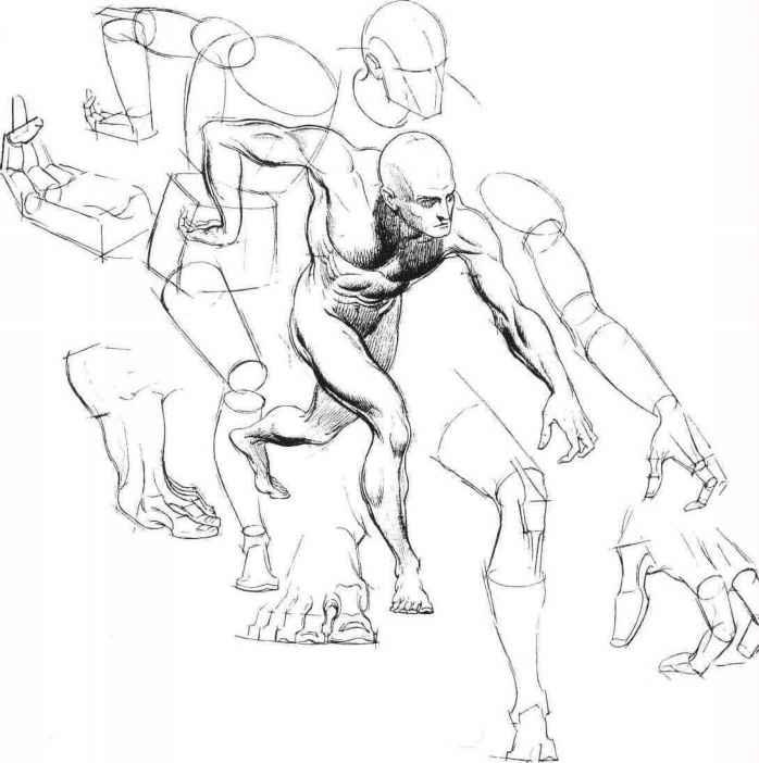 698x702 Body Figure Drawing